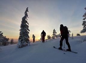 OPF arctic ski tour