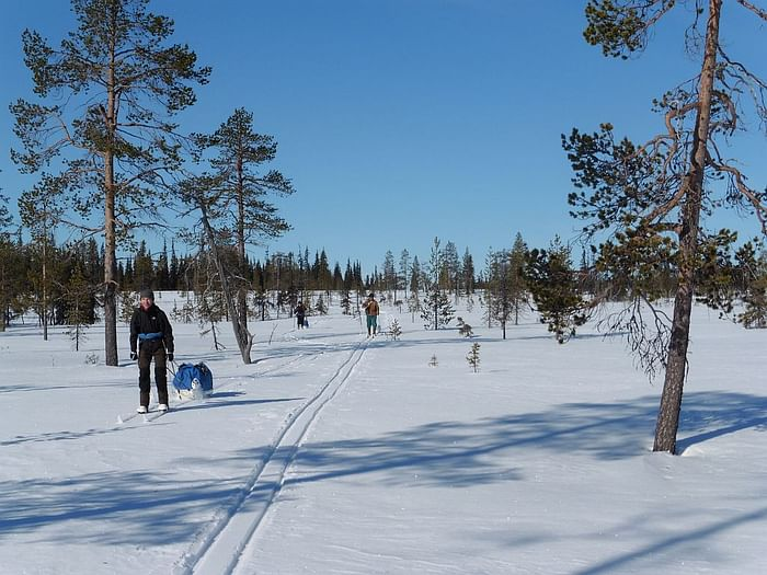 Backcountry skiing and winter camping