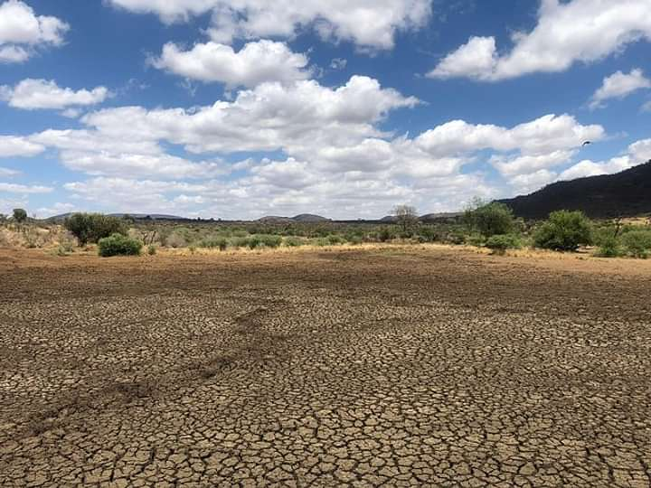 Mud flats after drought