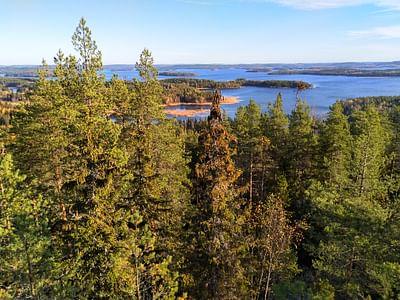 Nature safari Finland Oy  Unesco maailman perintökohde Struven ketju opastettu retki Oravivuori Korpilahti      Jyväskylä