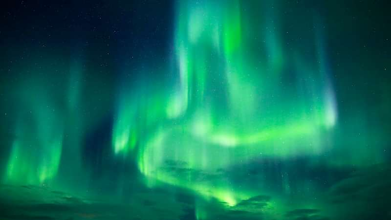 Artistic shapes of the dancing auroras